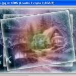 Immagine8
