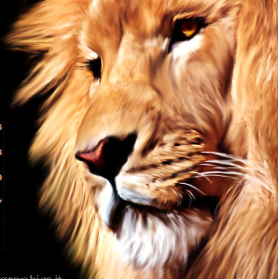 photomanipulation lion leone art artist artistic artists arte myart artworkhellip