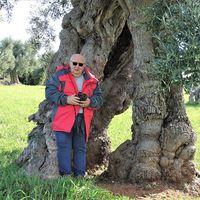 Foto del profilo di Roberto D'Alessandro